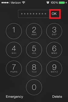 iPhone Passcode OK.jpg