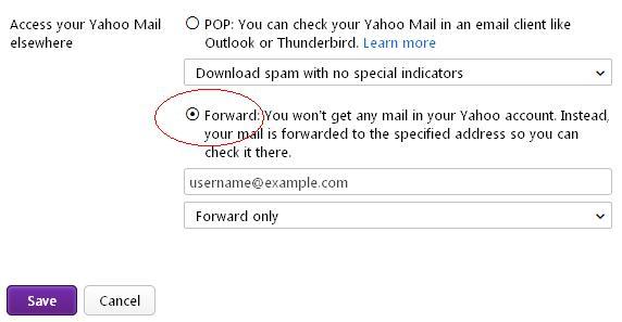 Yahoo automatically forward all email.JPG